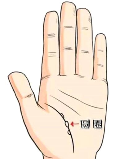 早死的手相,6种早死的手相分析-第4张图片-爱薇女性网